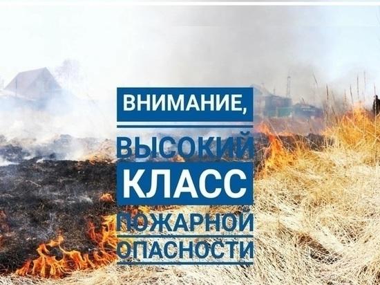 Синоптики обещают ярославцам жару, а МЧС-пожары