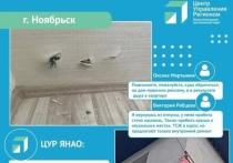 Баннер снимут и проведут ремонт: ЦУР ЯНАО взял на контроль пробитую рекламщиками стену дома в Ноябрьске