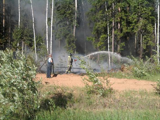 Крупный лесной пожар произошел в Ивановской области