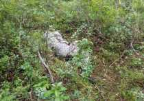 Появились фото тела погибшего сотрудника школы Лабытнанги
