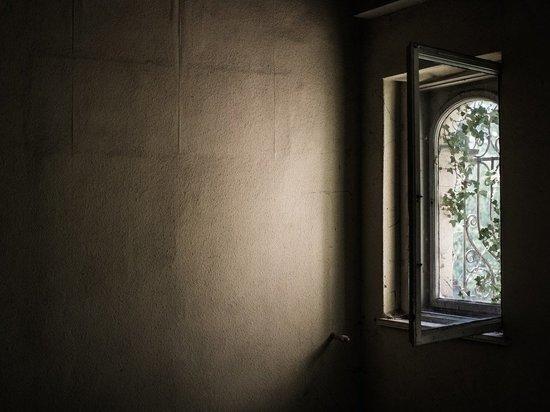 Глава СК Александр Бастрыкин проконтролирует дело о выброшенном из окна бийском младенце