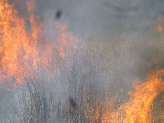 Омские власти отменили противопожарный режим повышенной готовности