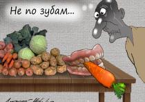 Пресловутый борщевой набор, который является индикатором цен на отечественном овощном рынке, перестал дорожать
