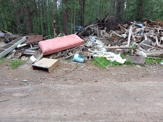 Жители Зеленоборского обеспокоены мусорными свалками в своем поселке