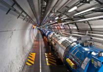 На  Большом адронном коллайдере — открытие