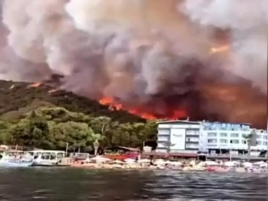 Огонь приблизился к населенным пунктам на расстояние 100 метров