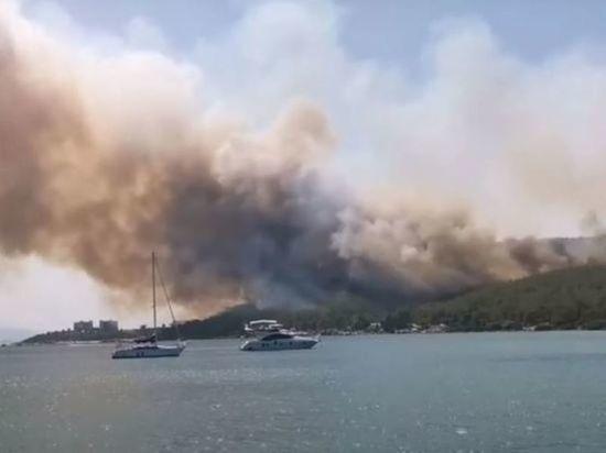 В турецком Бодруме потушили лесной пожар