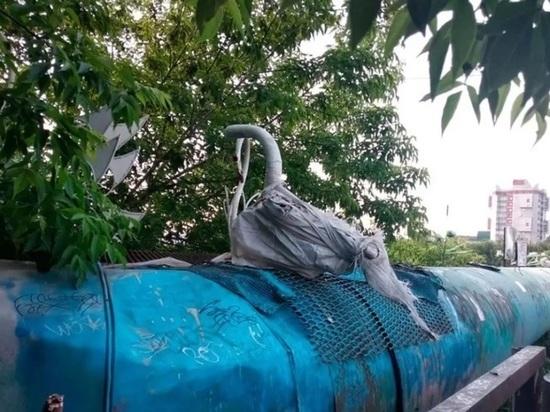 С путепровода у Нового рынка в Барнауле уберут стаю лебедей