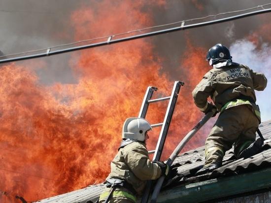 В Алтайском крае за сутки потушили 38 пожаров