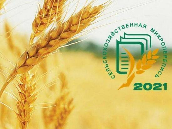Серпуховские производители станут участниками сельскохозяйственной микропереписи