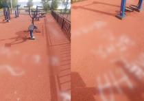 Неизвестные изрисовали покрытие спортивной площадки граффити в Петрозаводске