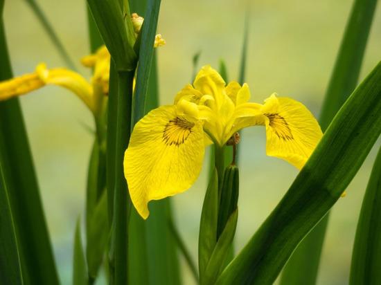 Последний месяц лета – не только период сбора урожая и ухода за посадками
