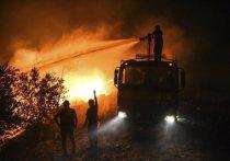 В Турции продолжают бушевать пожары, охватившие уже несколько городов, включая популярнейшую среди туристов курортную зону Анталия