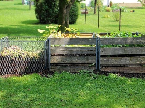 Соблюдение простых правил обеспечит хороший урожай