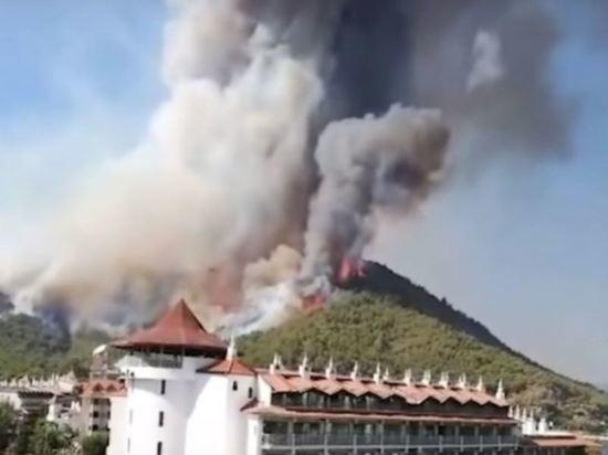 В Турции локализовали 70 из 81 очага лесных пожаров