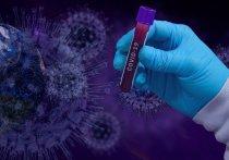 Группа британских ученых предположила, что новый штамм коронавируса будет убивать каждого третьего заразившегося