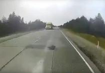 Момент гибели водителя автобуса от монтировки в ЯНАО попал на видео