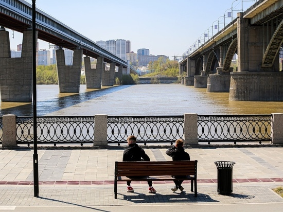 В Новосибирске на Михайловской набережной началась вырубка старых деревьев