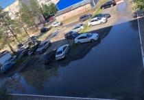 «Воняет, как от болота»: на вечно затопленный двор пожаловались жители Муравленко