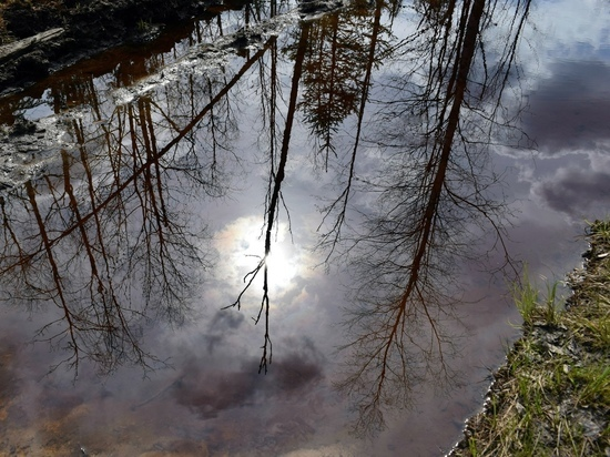 1 августа в Карелии будет дождливым