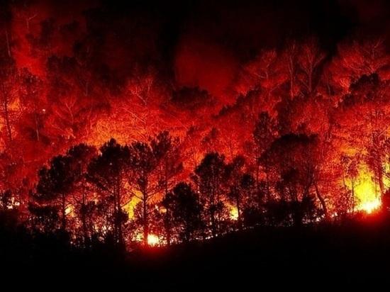 Возле турецкого курорта Бодрум вспыхнул новый пожар