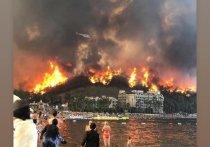На первоначальном этапе на экстренные меры по устранению ущерба от лесных пожаров в регионах Турции было выделено 50 млн турецких лир (6 млн долларов), сообщил президент страны Реджеп Тайип Эрдоган по итогам осмотра лесных пожаров в районе Антальи