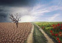 Ученые из Орегонского университета рассказали о неизбежных климатических изменениях и предупредили об ухудшении «жизненно важных функций» Земли