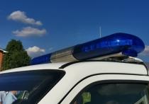 В Ясногорском районе полиция задержала расхитителей дач