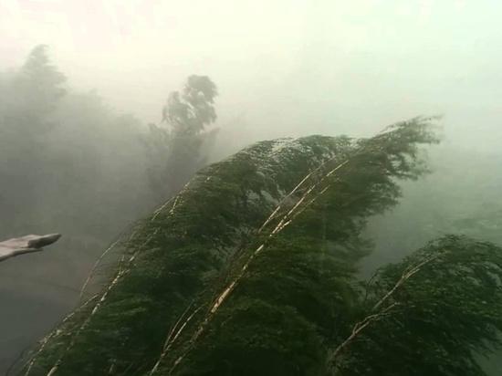 МЧС предупреждает смолян о сильном ветре и грозе 2 августа