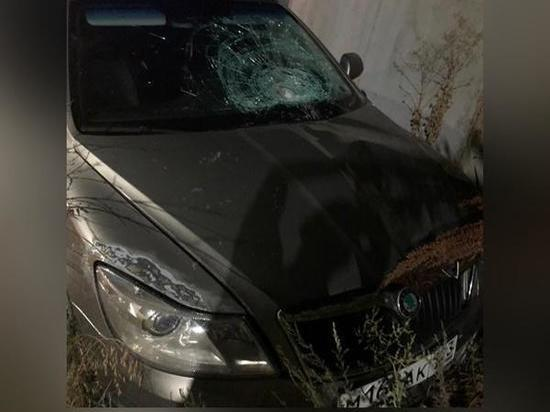 В Каменске пьяный водитель сбил пешехода и скрылся с месте ДТП