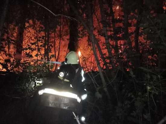 В Оренбурге из-за ландшафтного пожара объявили режим ЧС регионального масштаба