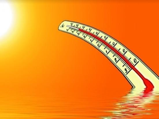 Гидрометцентр предупреждает жителей ЦФО об об аномальной жаре в понедельник