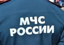 60 боеприпасов времён Великой Отечественной обнаружили на Птахинской высоте