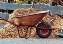 Мульчирование – это укрытие грядок и пространства между рядами органическим или синтетическим материалом, которое необходимо для избавления от сорняков, обогащения почвы и защиты растений от неблагоприятных условий