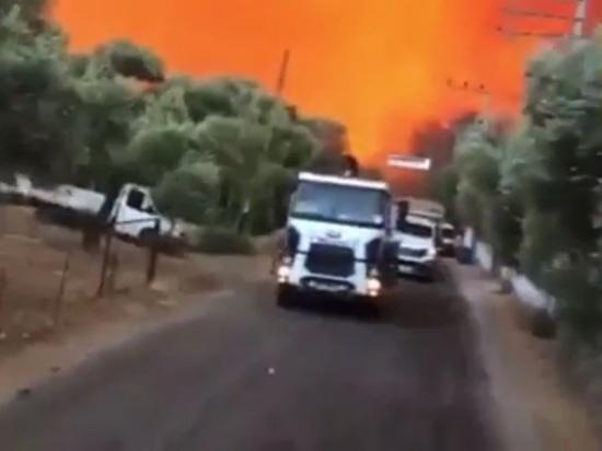 Люди бегут из туристических мест в Турции, горит скот фермеров