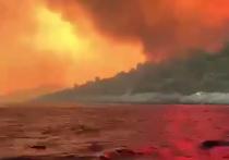 Масштабные пожары охватили территорию стран Южной Европы и Ближнего Востока