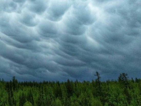 Псковские энергетики работают в режиме повышенной готовности из-за мощных ливней