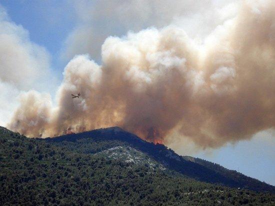 В Греции из-за жары вспыхнули лесные пожары