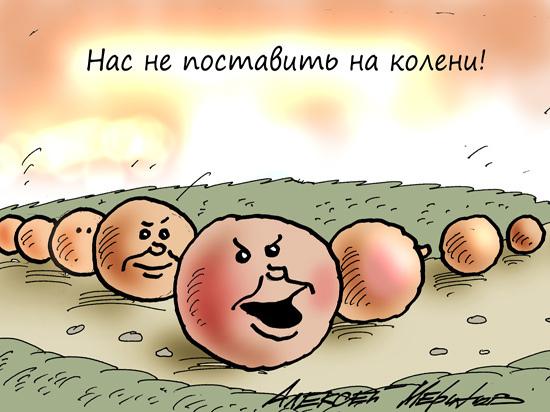 Чем Владимира Владимировича впечатлила русская сказка