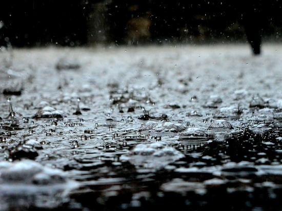 До 36 мм осадков выпало в Псковской области за 12 часов