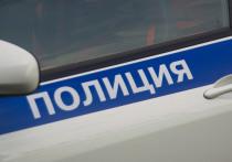 15-летняя московская школьница, которая заявила о том, что ей на улице сделал инъекцию неизвестный мужчина, оказалась дочерью известной актрисы