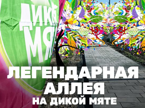 На поле фестиваля «Дикая Мята» будет заложена аллея в честь партнеров и музыкантов