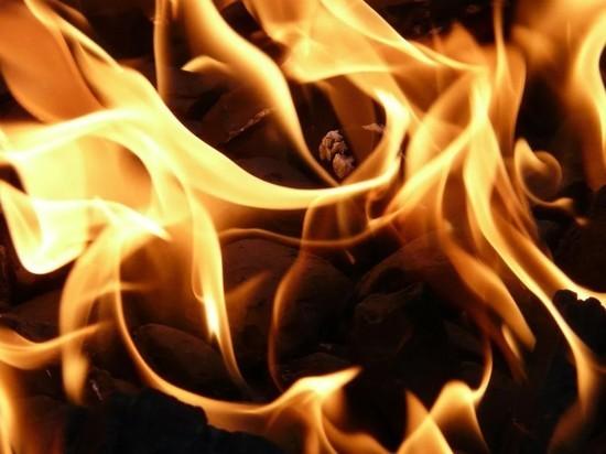 Природный пожар под Оренбургом получил максимальный ранг сложности