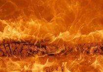 В Псковской области отменили особый противопожарный режим