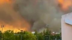 В Греции лесной пожар подступил вплотную к Афинам