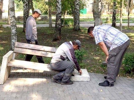 В Новомичуринске Рязанской области вандалы разгромили центральный парк