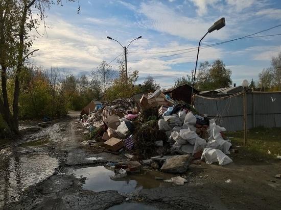 Ребенок получил травмы из-за падения стенки мусорки в свердловской деревне