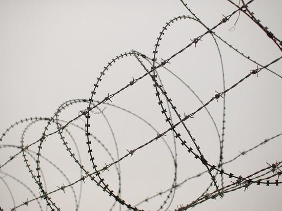 СК Белоруссии завел дело об убийстве мигранта на литовской границе