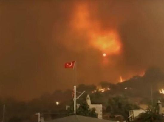 В Турции из-за лесного пожара загорелась ТЭС