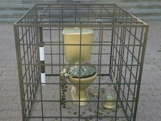 В Ставрополе задержан художник, установивший золотой унитаз у входа в здание ГИБДД